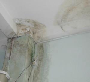 Hiện tượng trần nhà bị thấm nước, xuống cấp