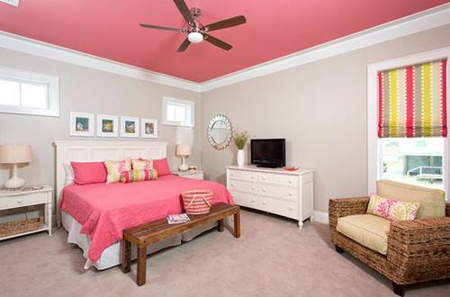 màu sắc ấn tượng cho trần nhà
