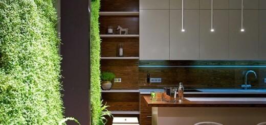 Cây cỏ tạo cho ngôi nhà thêm sức sống