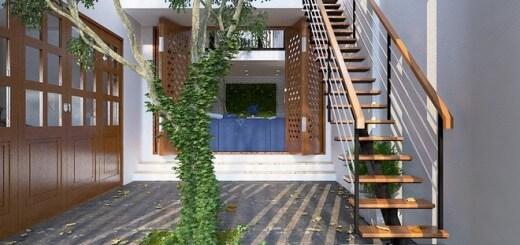 cây xanh bố trí đặt achnhj ngay cầu thang chính dẫn lên tầng 2