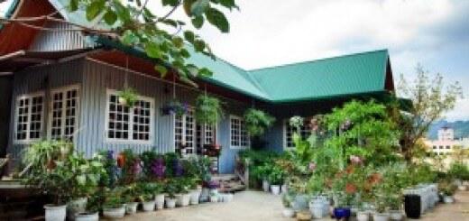 Ngôi nhà gỗ với vườn hoa tuyệt đẹp