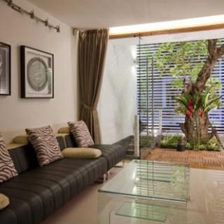 Phòng khách hài hào khi có thêm cây đặt ngay dưới giếng trời