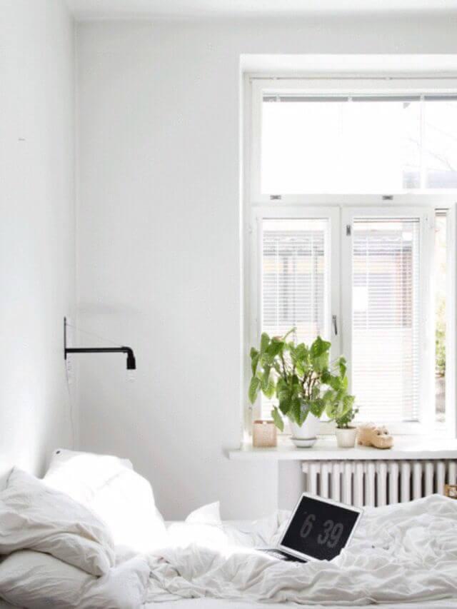 Khung cửa sổ ngập nắng với chậu cây xanh xinh xắn mang lại không khí tươi mát trong mẫu thiết kế nội thất phòng ngủ này.