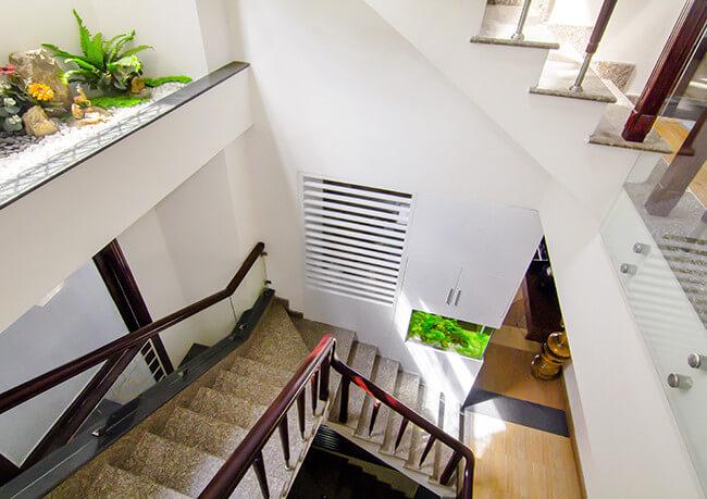 Sửa chữa cải tạo nhà với khu vực cầu thang đón nắng và gió, thêm phần sinh động khi có thêm màu xanh cây lá.