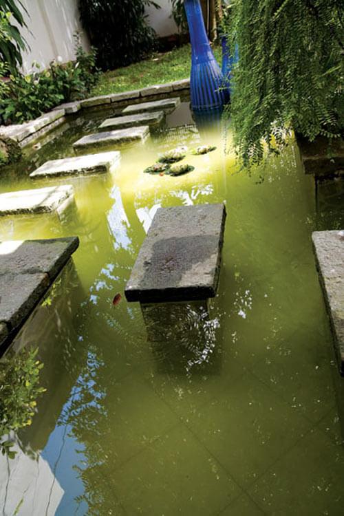 Khoảng không gian xanh gây ấn tượng với hồ nước nhỏ.