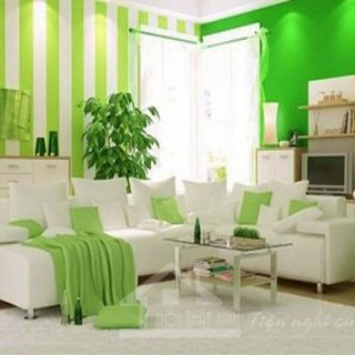 Sơn phòng khách đẹp với màu xanh lá cây dịu mát